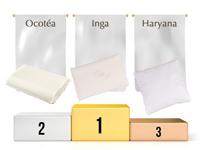 les 3 oreillers naturels les plus vendus en 2013 par Noctéa