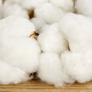 la ouate de coton est synthétique alors que le pur coton est naturel