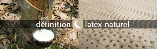 lexique matière Noctéa latex naturel