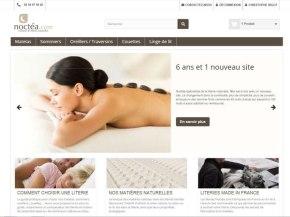 vue de la première page du site Noctéa
